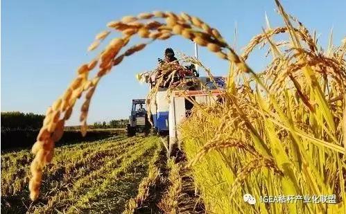 发改委:2017年农村产业融合,要做这些支持!