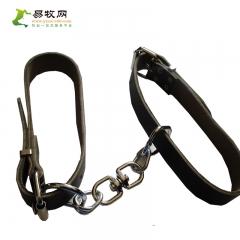 跛行链环—20cm