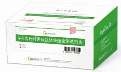 牛布鲁氏菌抗体快速检测试剂盒