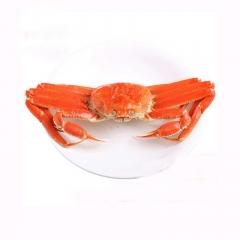 阿拉斯加整只雪蟹 500-600/只 熟冻鳕蟹