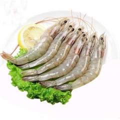 厄瓜多尔白虾900g进口大海虾 海鲜水产 南美白虾