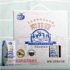 弗里生乳牛 索菲亚原味酸奶 来自欧洲保加利亚风味发酵乳五种益生菌发酵乳 巴士杀菌  星辰中联专属牧场