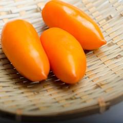 卢氏县石南桥番茄