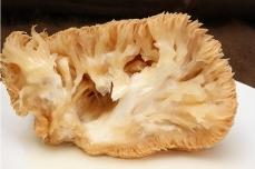 猴头菇1斤